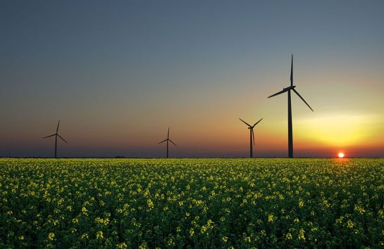 English: Wind turbines in a rapeseed field in Sandesneben, Germany ~ Jürgen at Flickr
