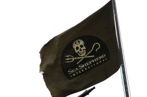 Flag of Sea Shepherd Conservation Society, an environmental action group against marine poaching and overfishing. ~ by David w ng / Wikipedia