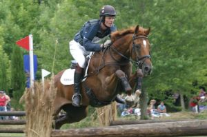 William Fox-Pitt in Eventing Grand Prix at Hickstead on Lyn How's Diamond Manati ~ by Roland Clarke